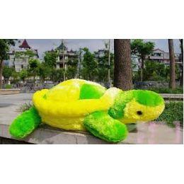 Big_Tortoise